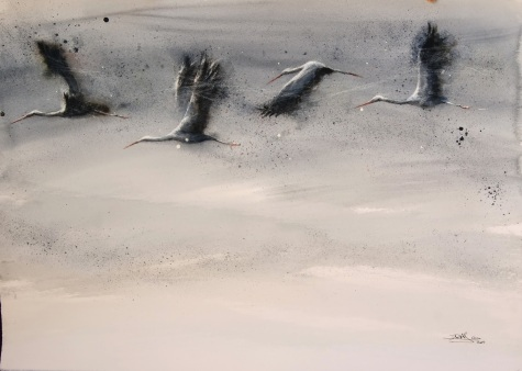 Vuelo de cigüeñas, acuarela 55x76cm2